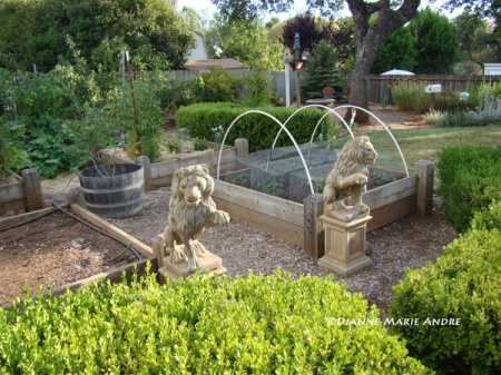 Overlooking part of the vegetable garden